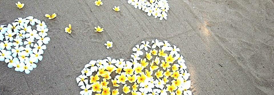 5 vigtigste grunde til selvudvikling trods modstand
