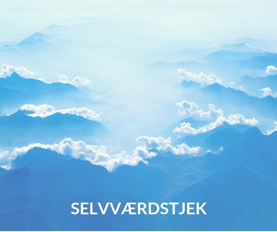 SELVVÆRDSTJEK-